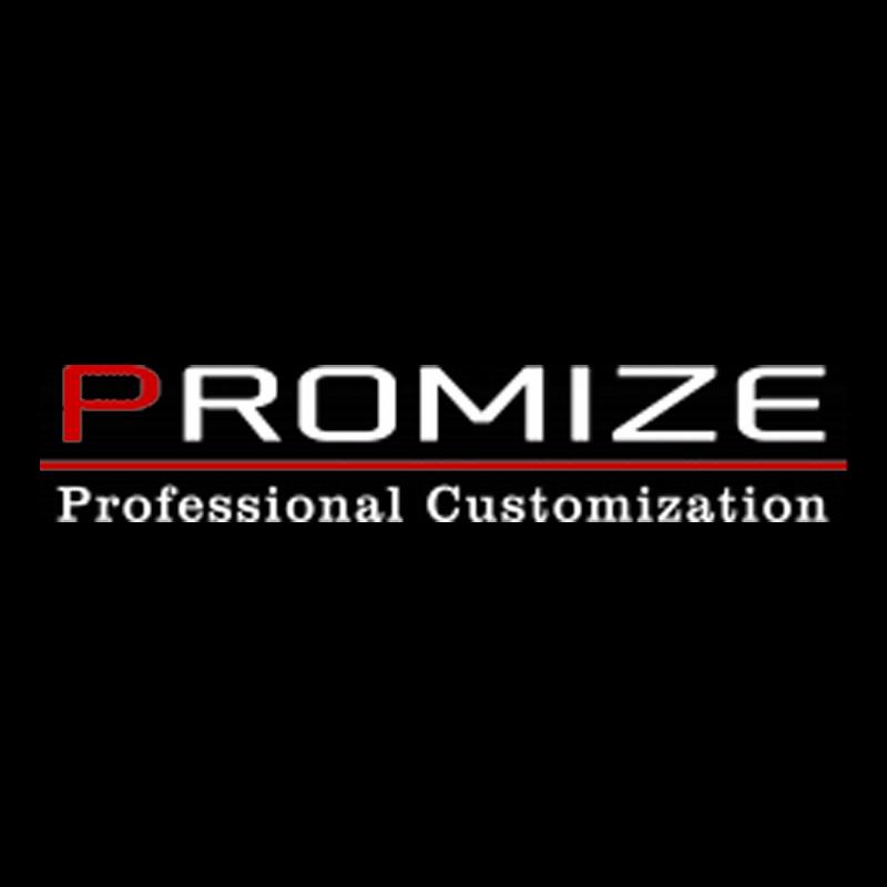 Promize/ EVlution